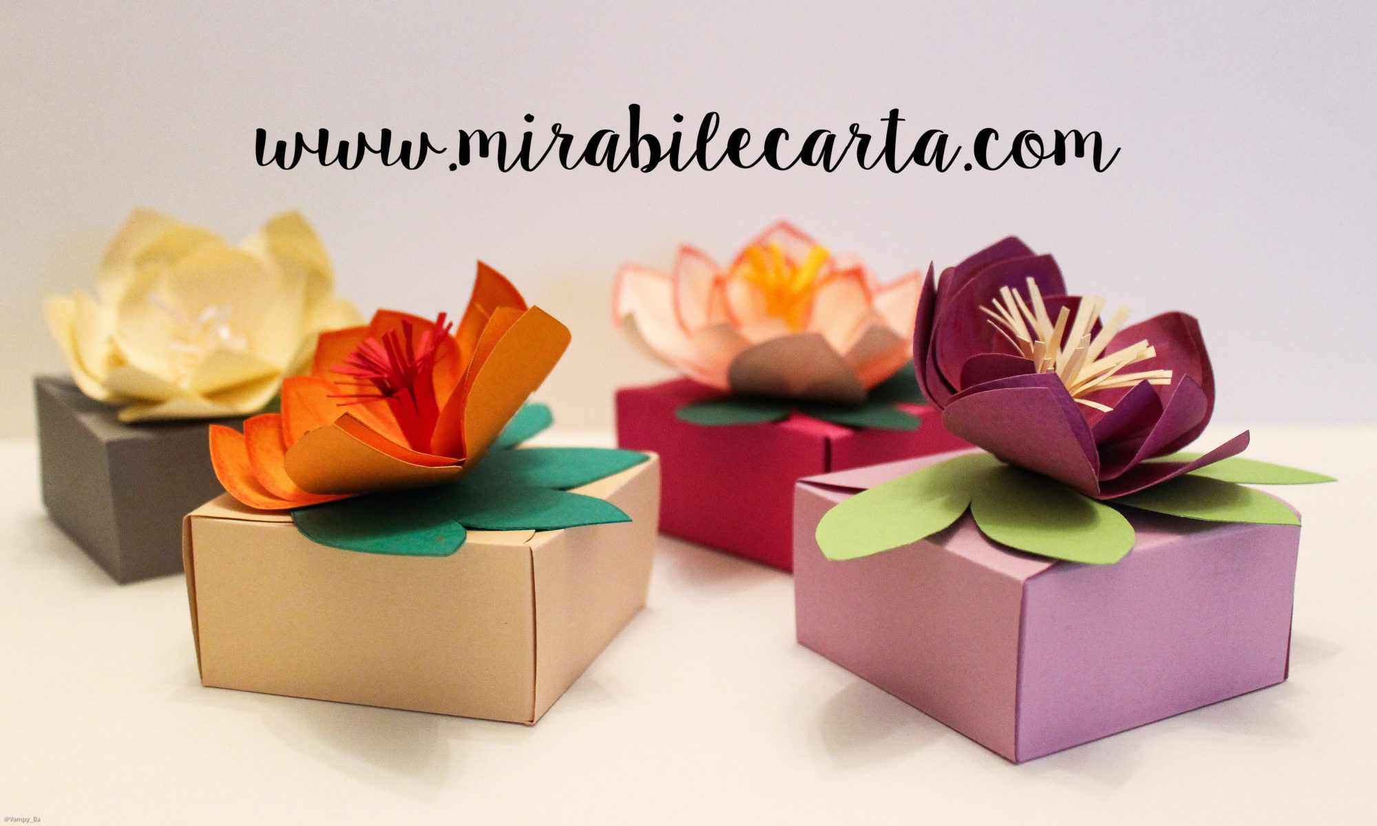 MIRABILE CARTA